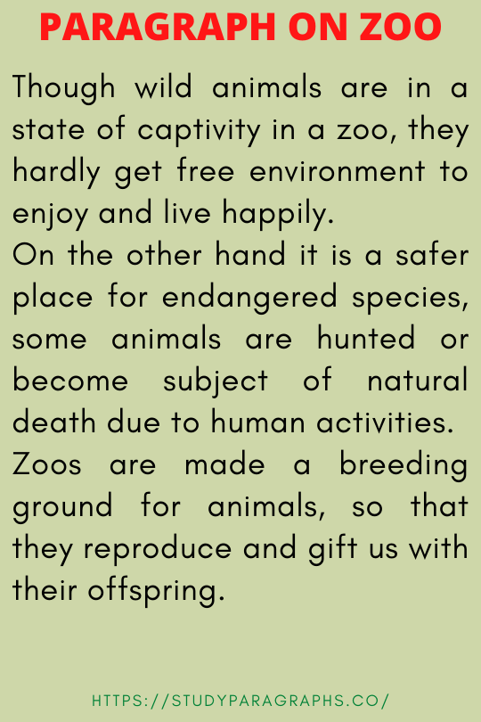 A visit of zoo paragraph