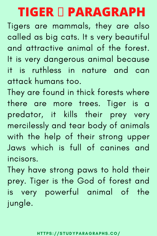 Paragraph about tiger
